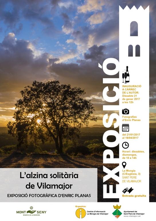 cartell-expo-alzina
