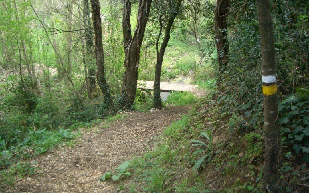 Ruta d'aquí: L'aigua a la Freixeneda
