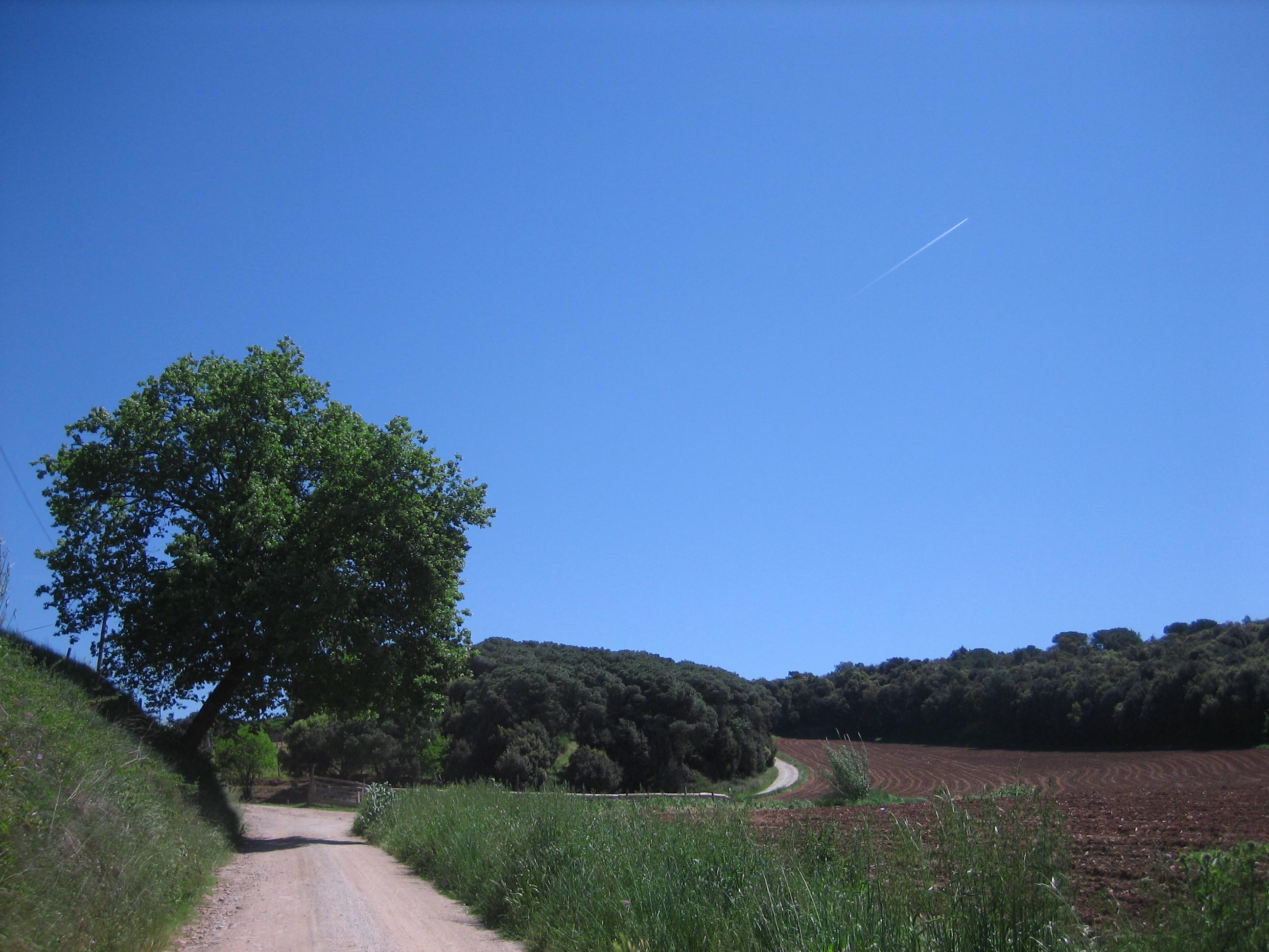 camí cal Burrec 2